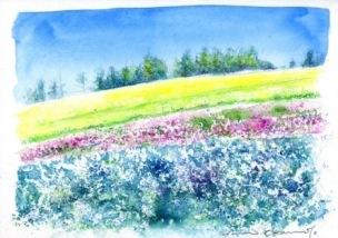 0907ジャガイモ畑