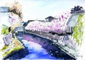 1003近江八幡