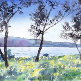 琵琶湖湖畔 (640x451)