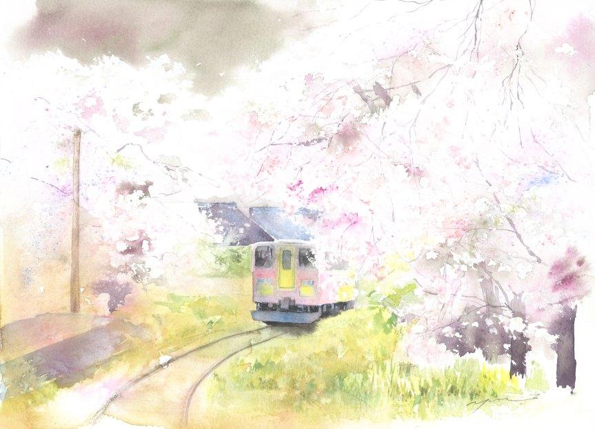 1603月桜舞い(岐阜県 樽見