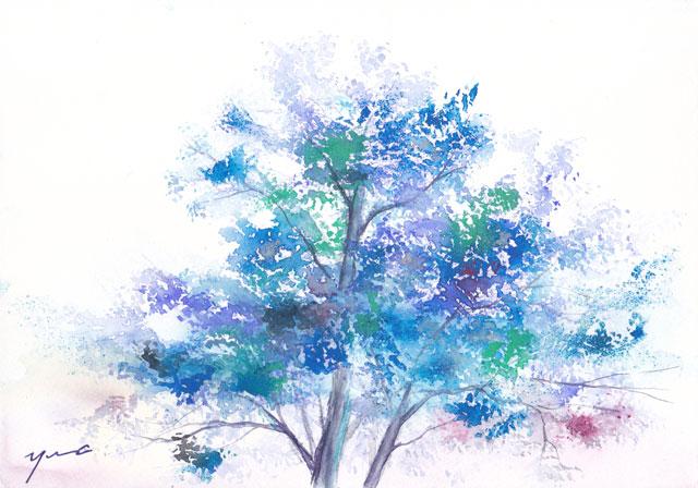 1606木立blue