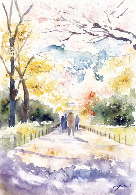 1704京都桜