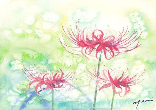 10月水彩色えんぴつ教室 ヒガンバナ すいさいいろ Suisaiiro
