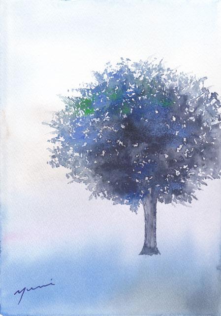 1904tree